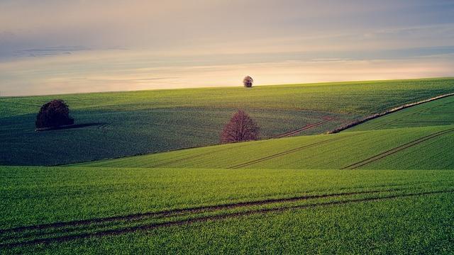 Chybí vám finance na koupi pozemku nebo vyrovnání majetkových poměrů? Pomůže hypotéka